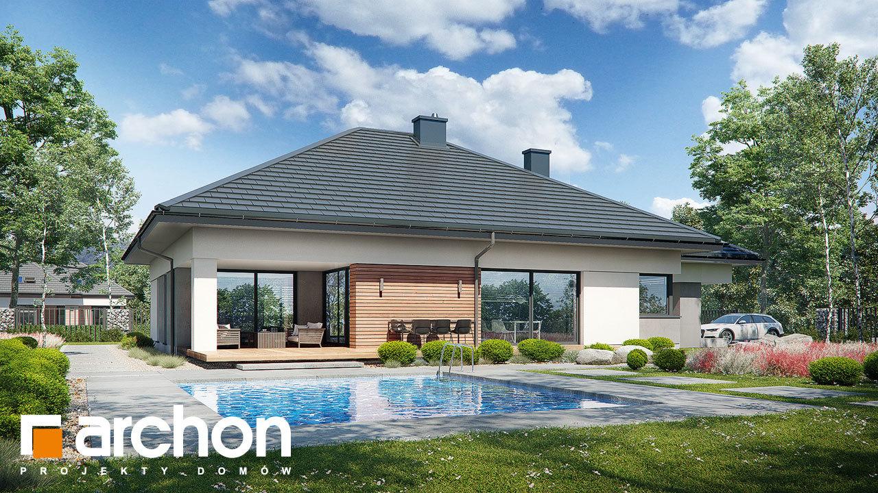 Проект будинку ARCHON+ Будинок в нігеллах 3 (Г2)