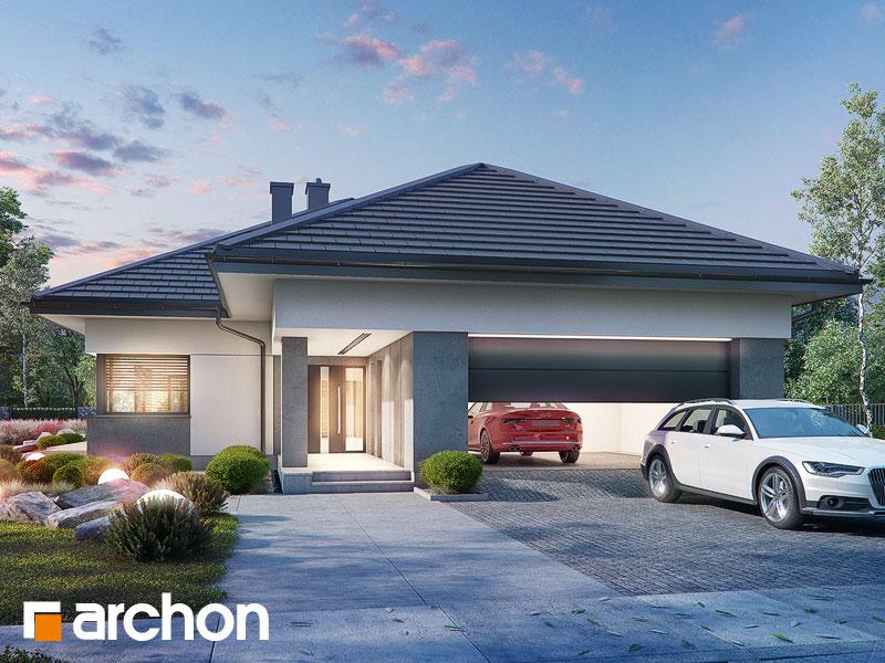 Проект будинку ARCHON+ Будинок в нігеллах 3 (Г2) Вид 1