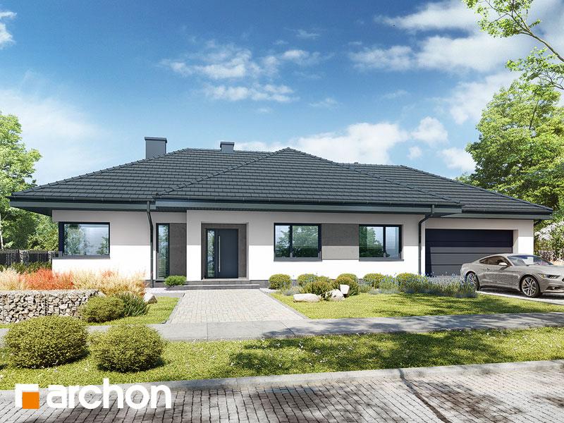 Проект будинку ARCHON+ Будинок в сантолінах 4 (Г2) Вид 1
