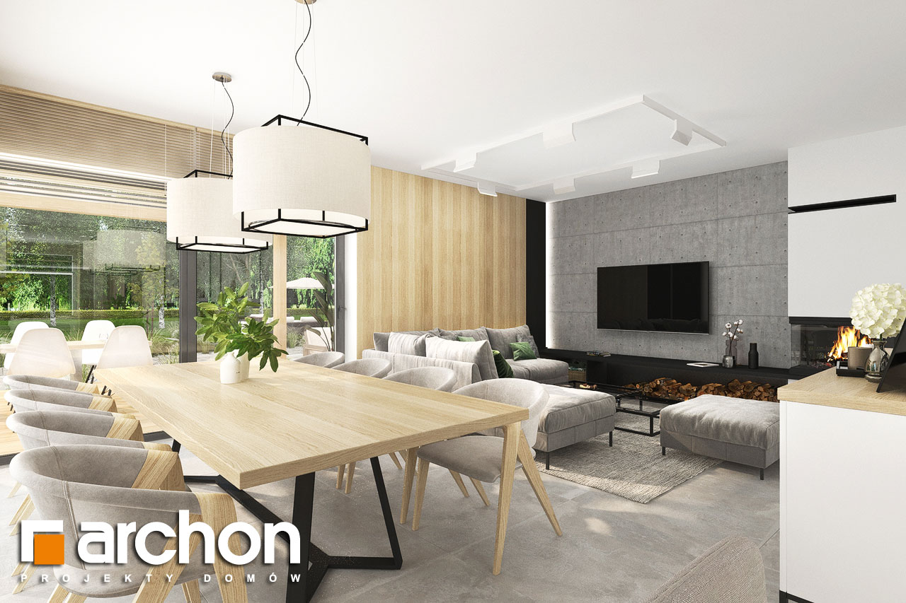Проект будинку ARCHON+ Будинок в сантолінах 4 (Г2) денна зона (візуалізація 1 від 3)
