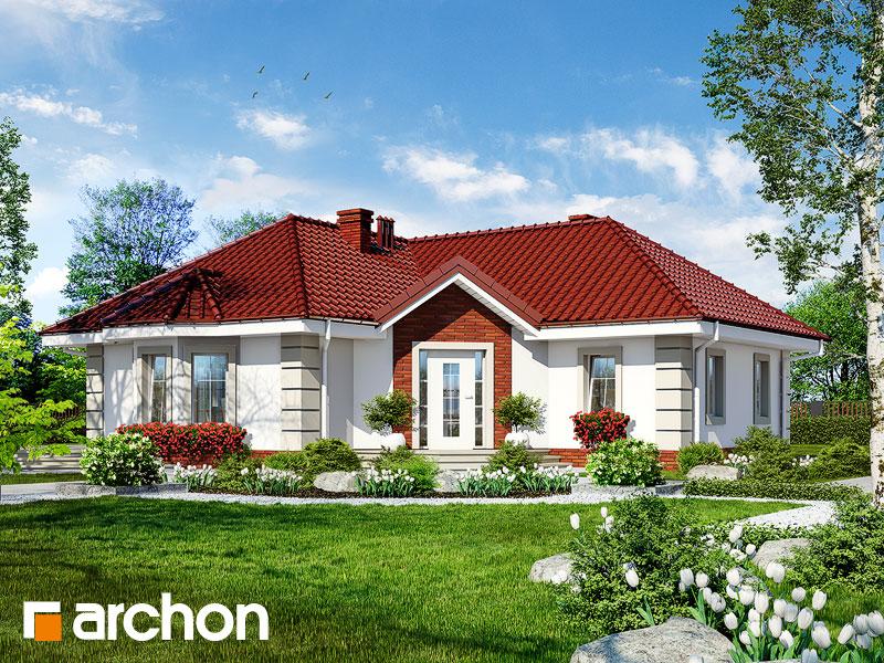 Проект будинку ARCHON+ Будинок в пустирниках Вид 1