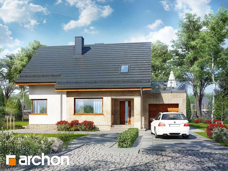 Проект дома ARCHON+ Дом в ариземах  Вид 1