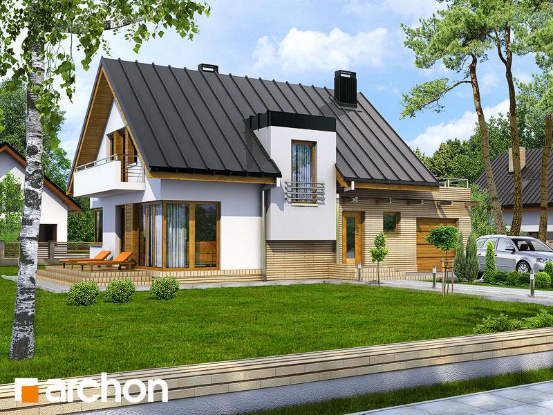 Проект дома ARCHON+ Дом в амариллисах Вид 1