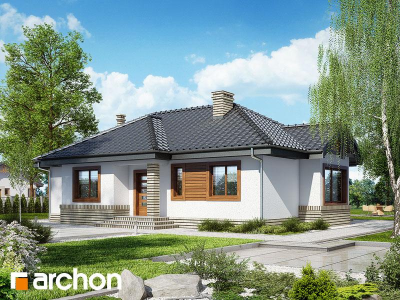Проект будинку ARCHON+ Будинок у вересі Вид 1