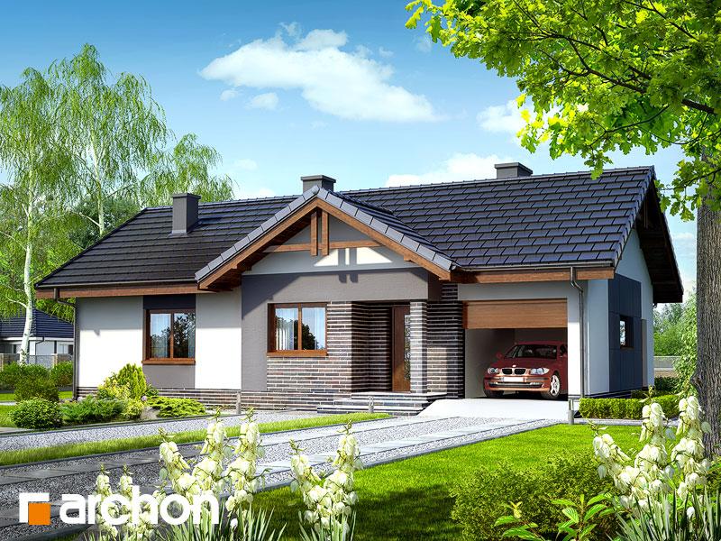 Проект дома ARCHON+ Дом в неринах Вид 1