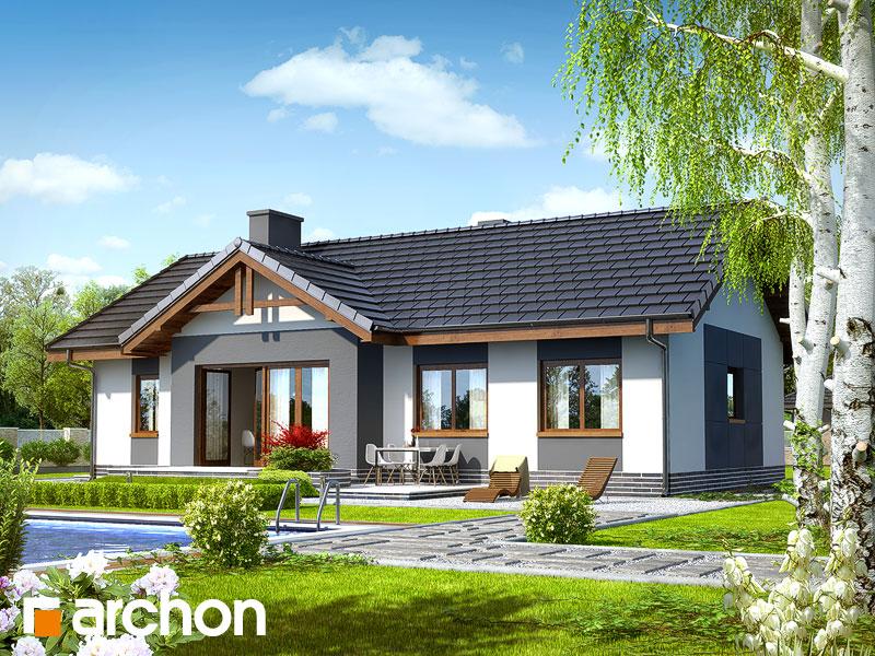 Проект дома ARCHON+ Дом в неринах Вид 2