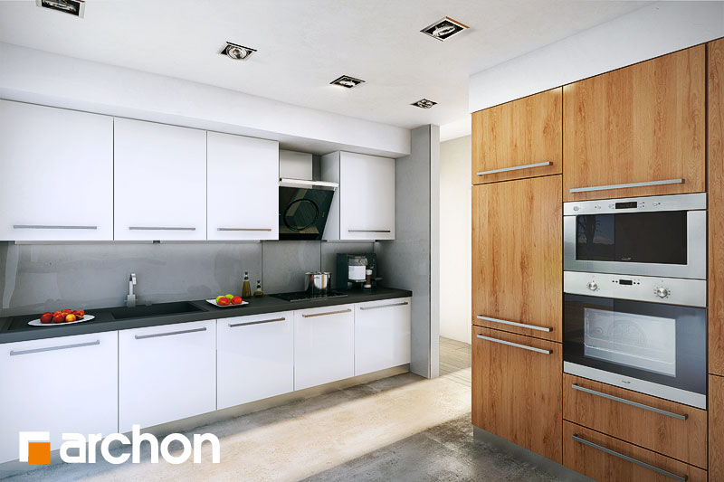 Проект будинку ARCHON+ Будинок в бонсай денна зона (візуалізація 1 від 3)