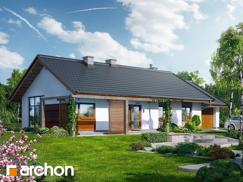 Проект будинку ARCHON+ Будинок в мекінтоші Вид 1
