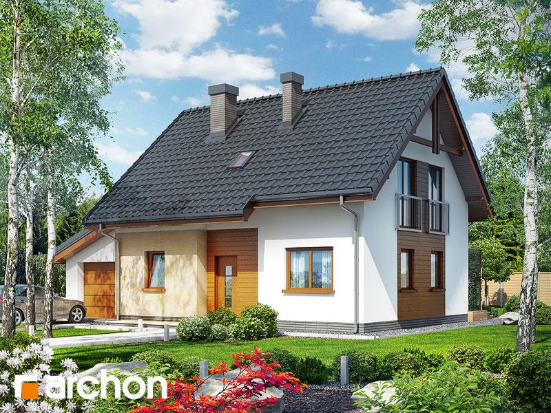 Проект будинку ARCHON+ Будинок в хлорофітумі (Г) Вид 1