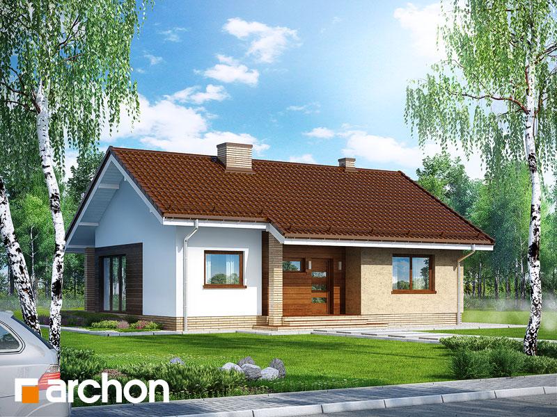 Проект будинку ARCHON+ Будинок під липкою стилізація 3