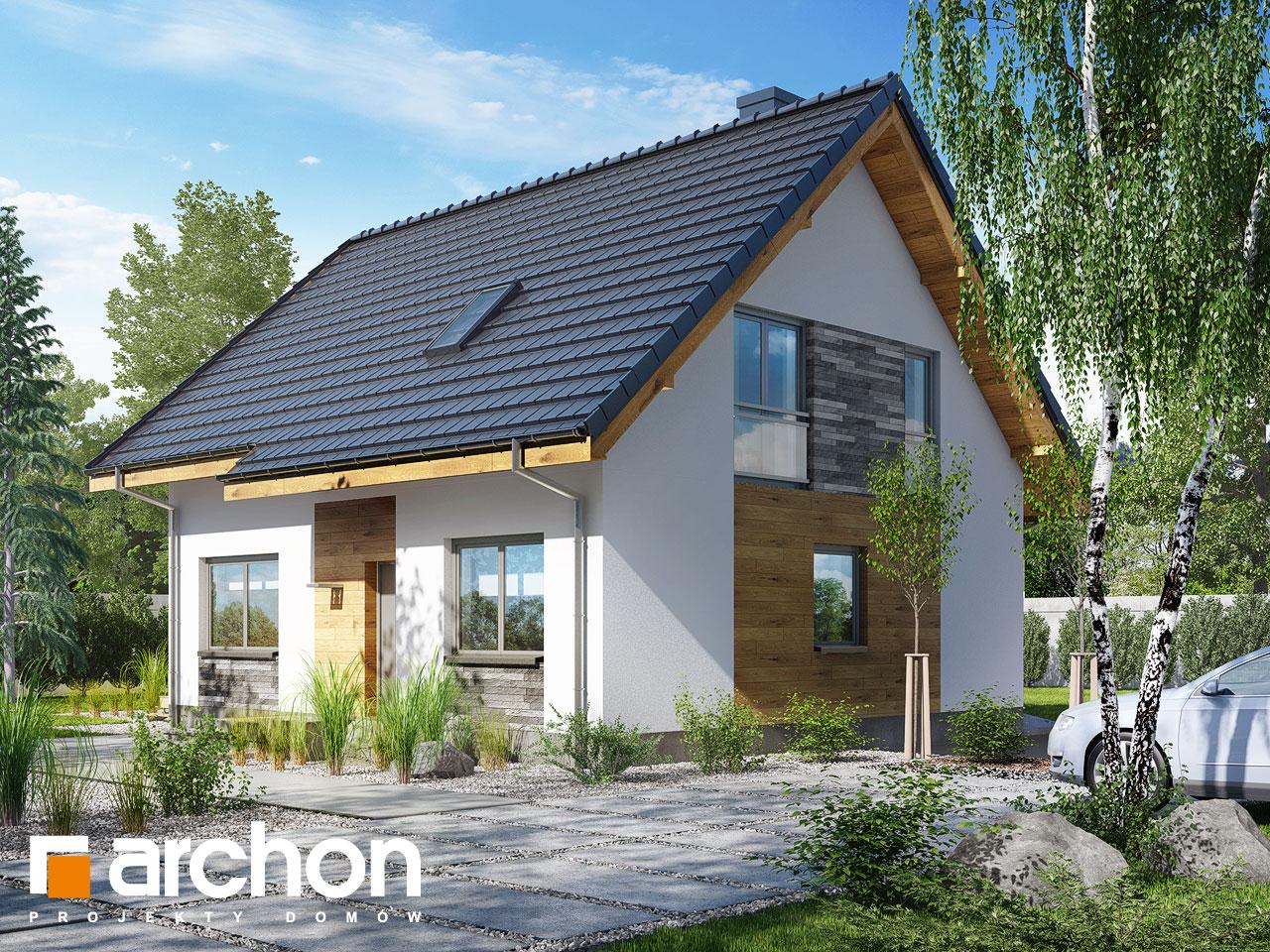 Проект будинку ARCHON+ Будинок в хлорофитумі 3 Вид 2