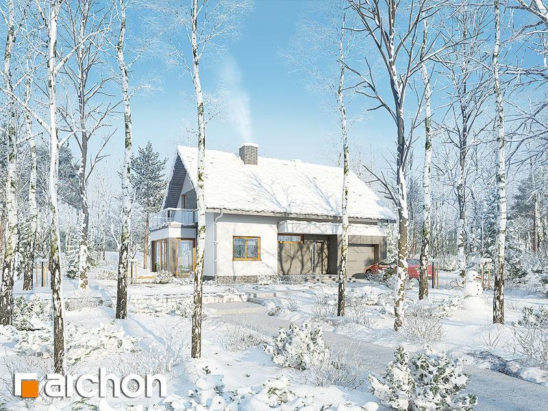 Проект будинку ARCHON+ Будинок під ацеролею додаткова візуалізація
