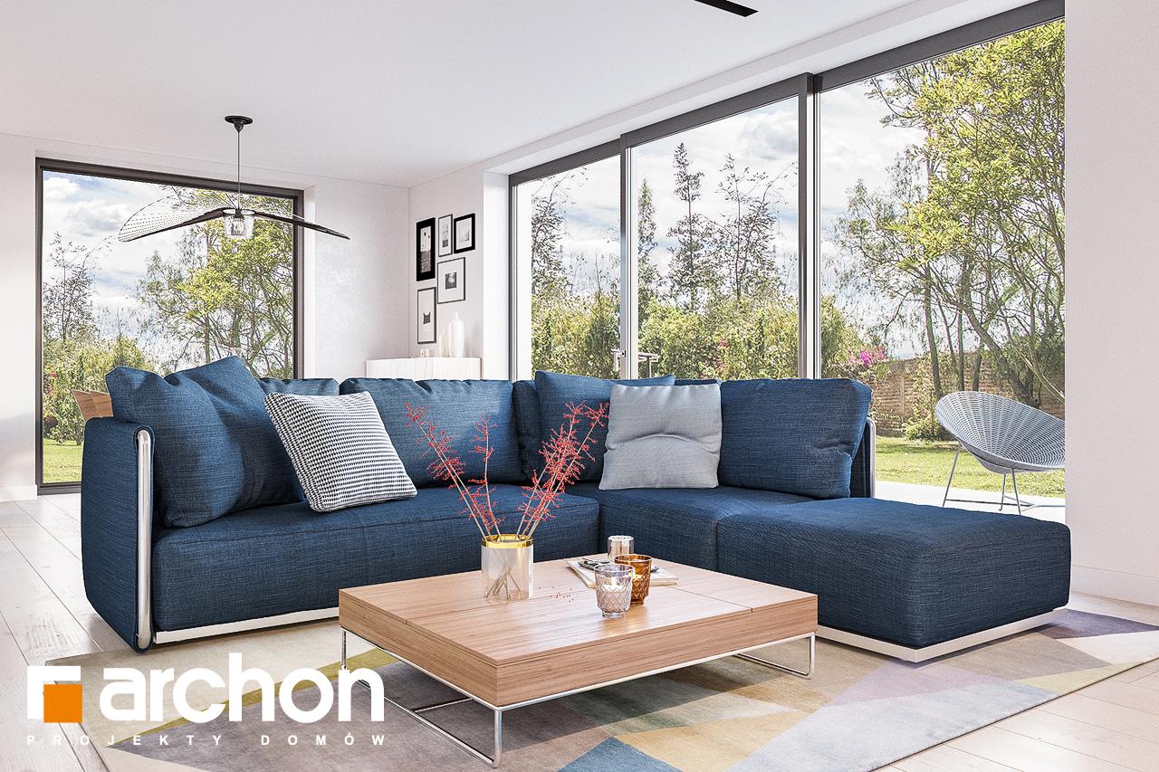 Проект будинку ARCHON+ Будинок в сон-траві 4 денна зона (візуалізація 1 від 3)