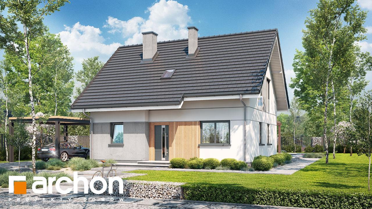 Проект будинку ARCHON+ Будинок в хлорофітумі ver.2 Вид 2