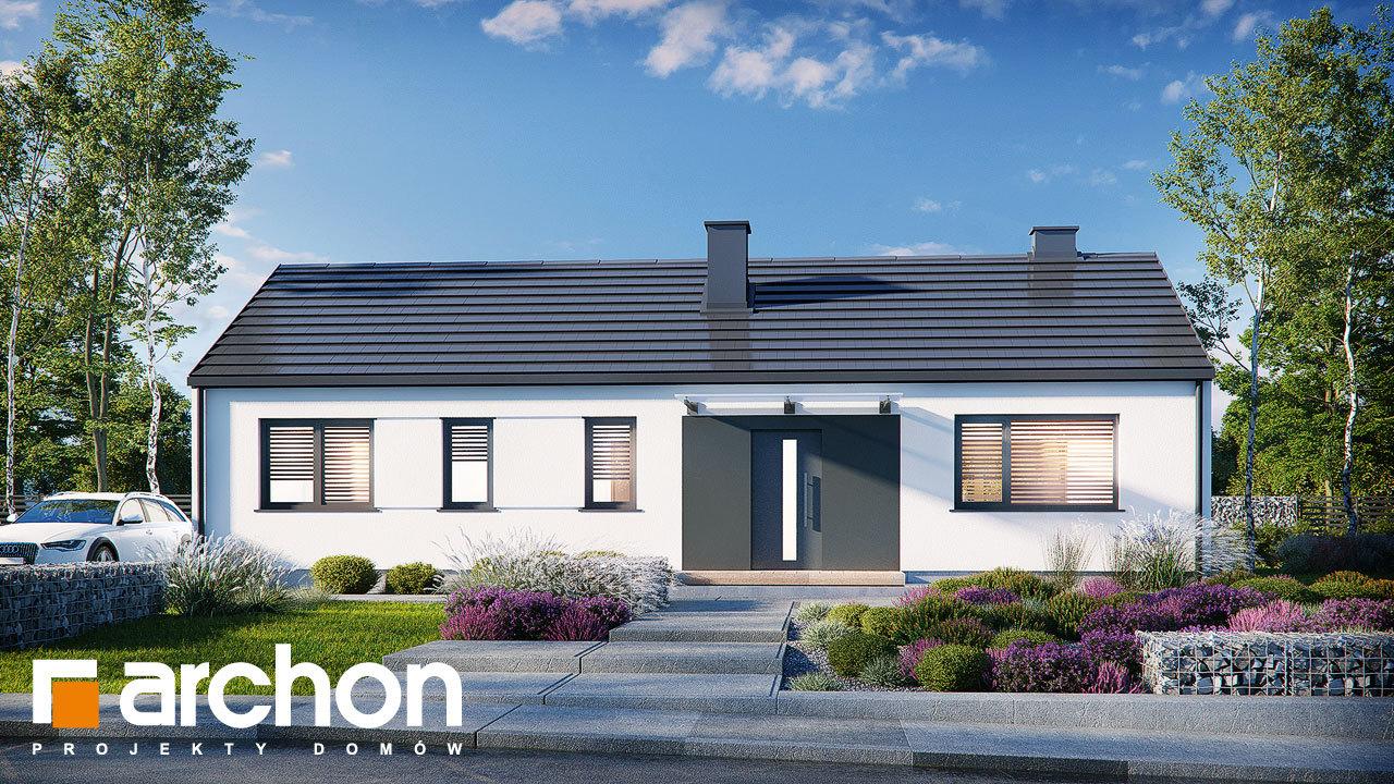 Проект будинку ARCHON+ Будинок в ірисах 2 (Н)