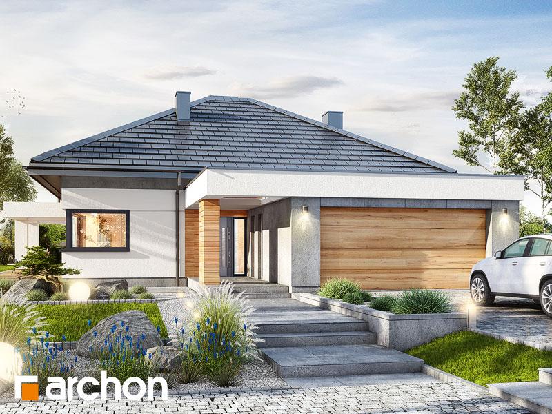 Проект будинку ARCHON+ Будинок в нігеллах (Г2) Вид 1