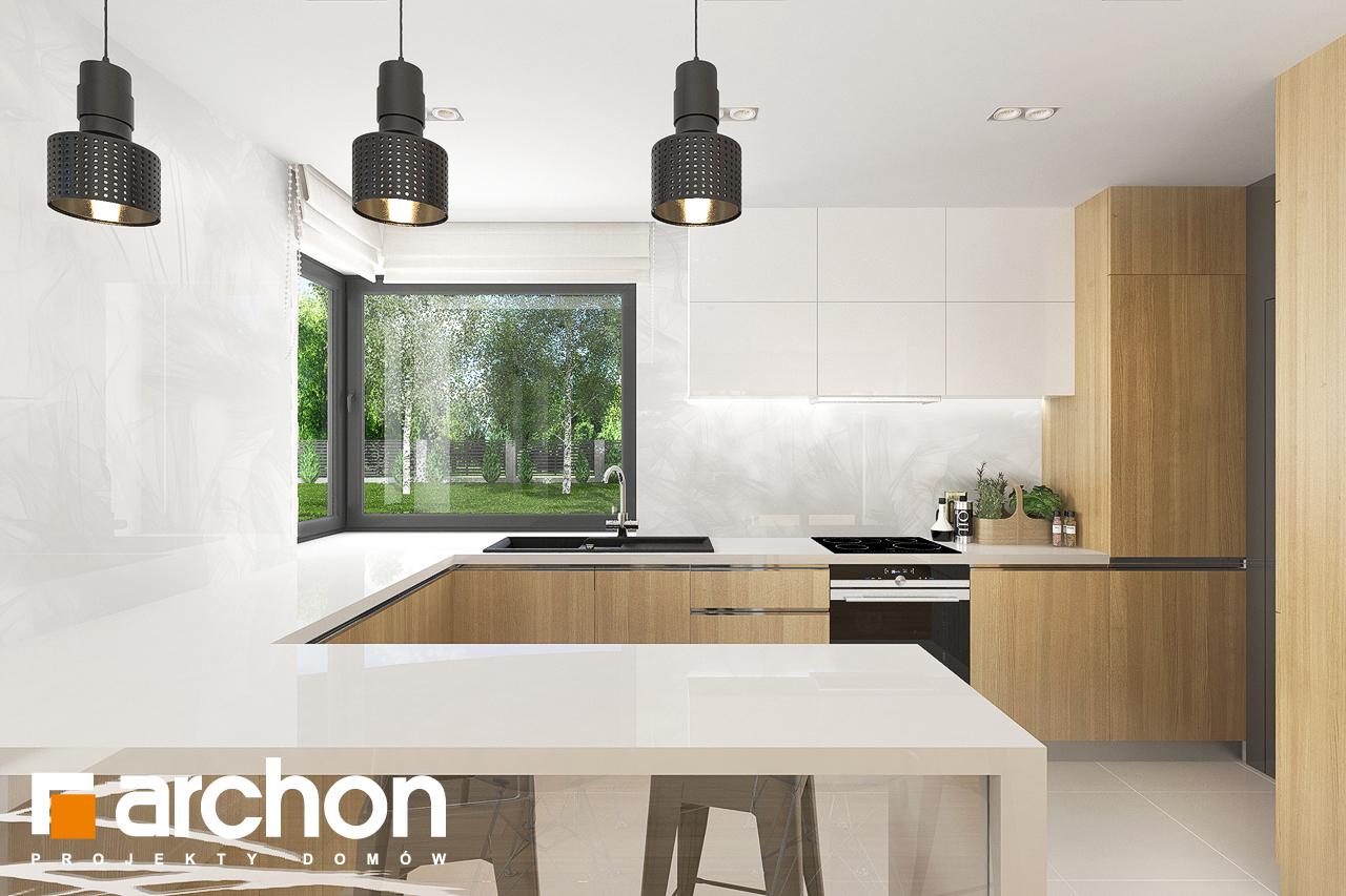 Проект будинку ARCHON+ Будинок в яблонках 8 (Г2) візуалізація кухні 1 від 1