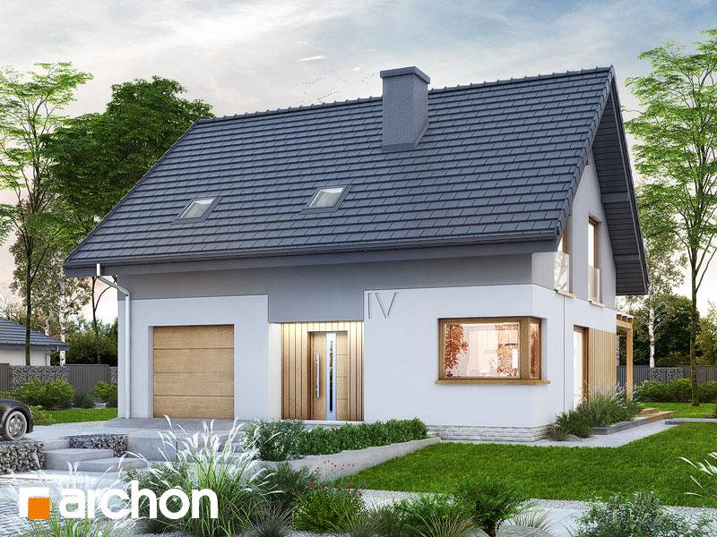 Проект дома ARCHON+ Дом в аммобиуме Вид 1
