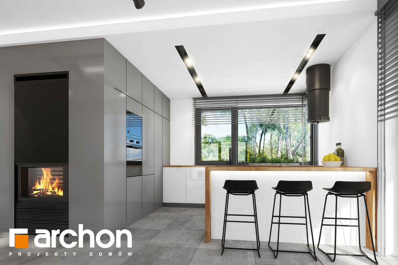 Проект будинку ARCHON+ Будинок в нефрісах (Г) візуалізація кухні 1 від 1