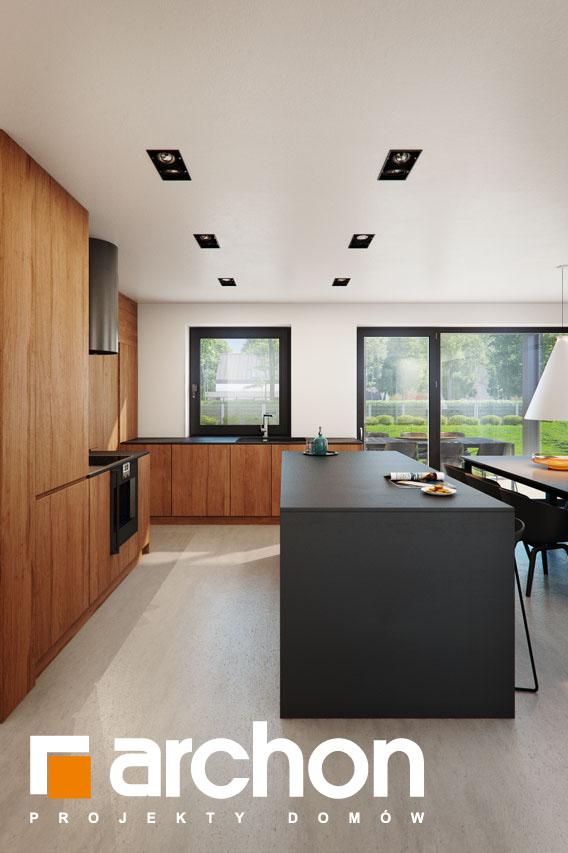 Проект дома ARCHON+ Дом в ирисе (НА) визуализация кухни 1 вид 1