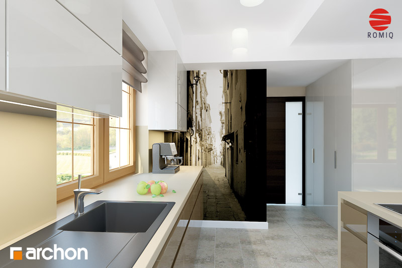 Проект будинку ARCHON+ Будинок в каллах 3 вер.2 аранжування кухні 1 від 3