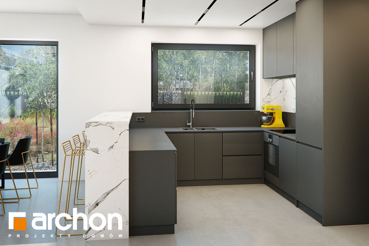 Проект будинку ARCHON+ Будинок в папаверах  візуалізація кухні 1 від 2