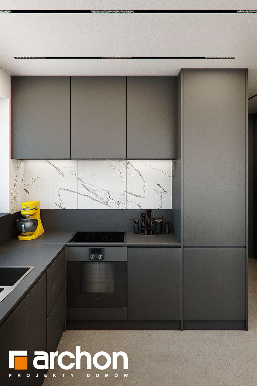 Проект будинку ARCHON+ Будинок в папаверах  візуалізація кухні 1 від 3