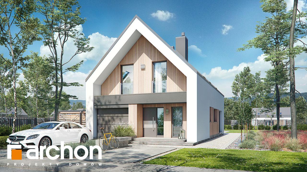 Проект будинку ARCHON+ Будинок в папаверах  Вид 2