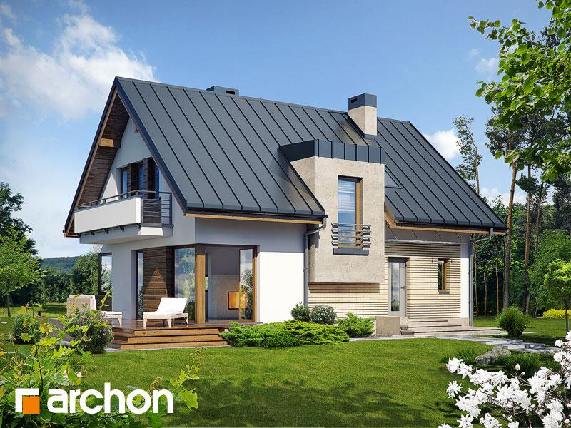 Проект будинку ARCHON+ Будинок в амарилісах (В) Вид 1