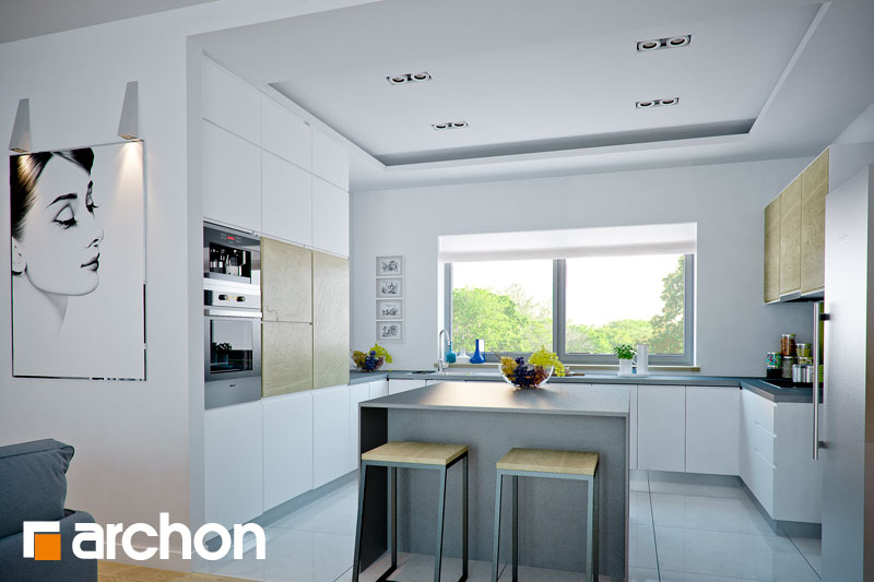 Проект дома ARCHON+ Дом в навлоциях визуализация кухни 1 вид 1