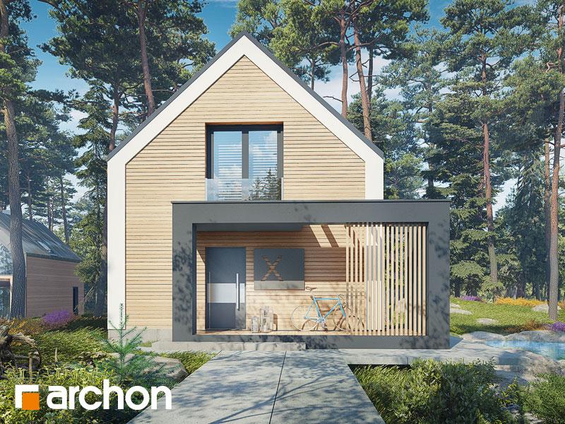 Проект будинку ARCHON+ Будинок в голокупнику (А) Вид 1