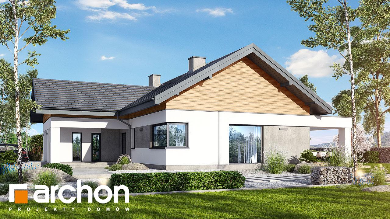 Проект будинку ARCHON+ Будинок в цикорії додаткова візуалізація