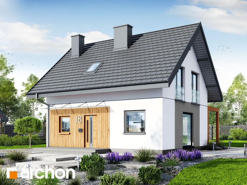 Проект будинку ARCHON+ Будинок в хлорофітумі 20 Вид 1