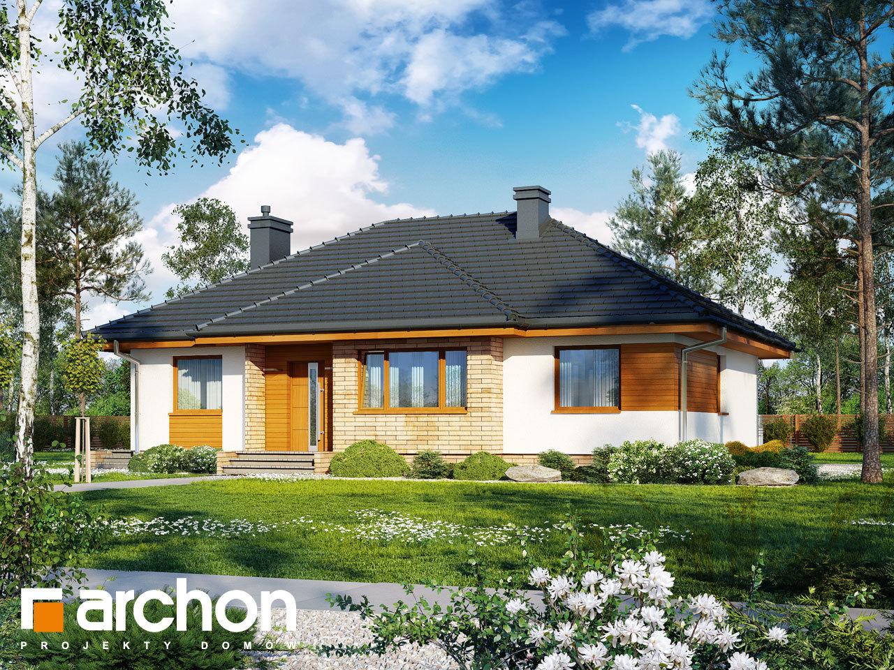 Проект будинку ARCHON+ Будинок в акебіях (В)