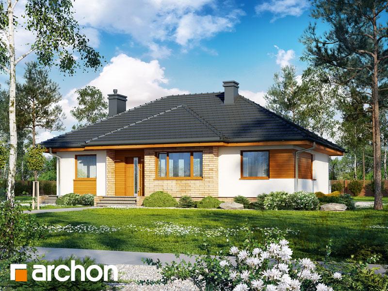 Проект будинку ARCHON+ Будинок в акебіях (В) Вид 1