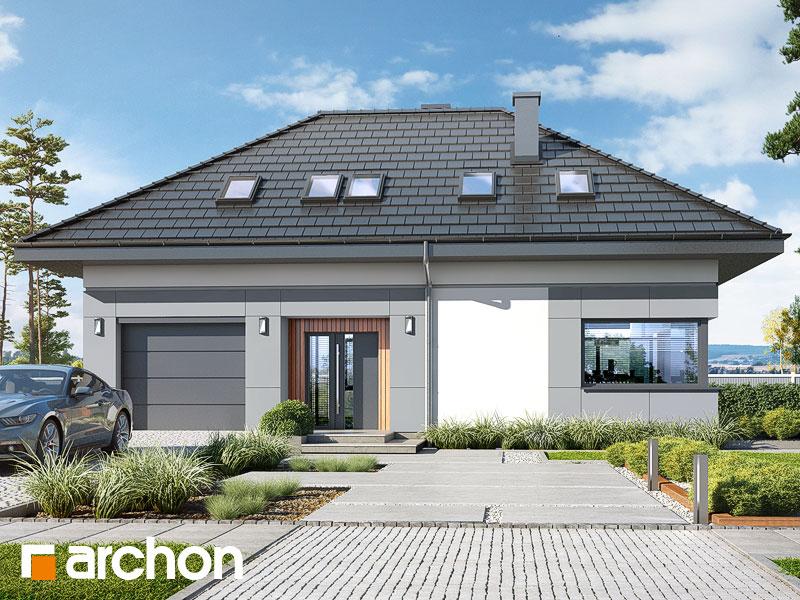 Проект будинку ARCHON+ Будинок в арахісах Вид 1