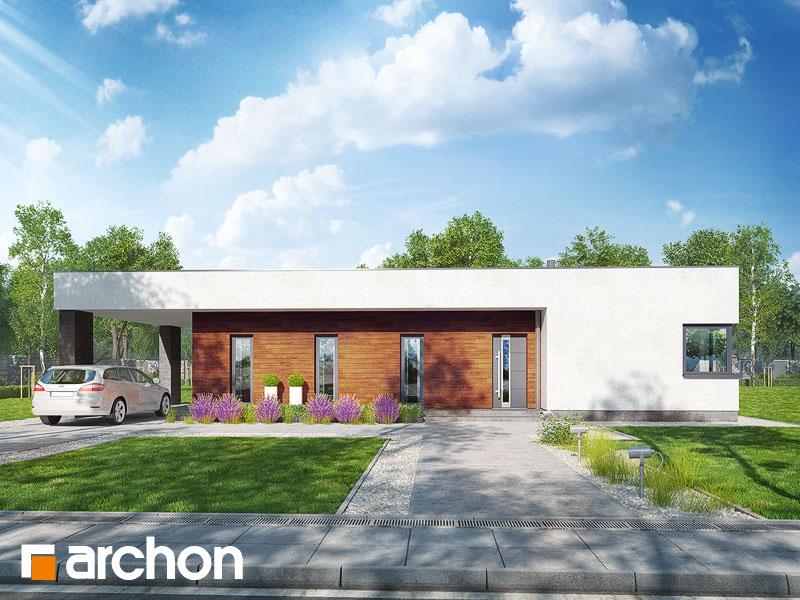 Проект будинку ARCHON+ Будинок в плюмеріях Вид 1